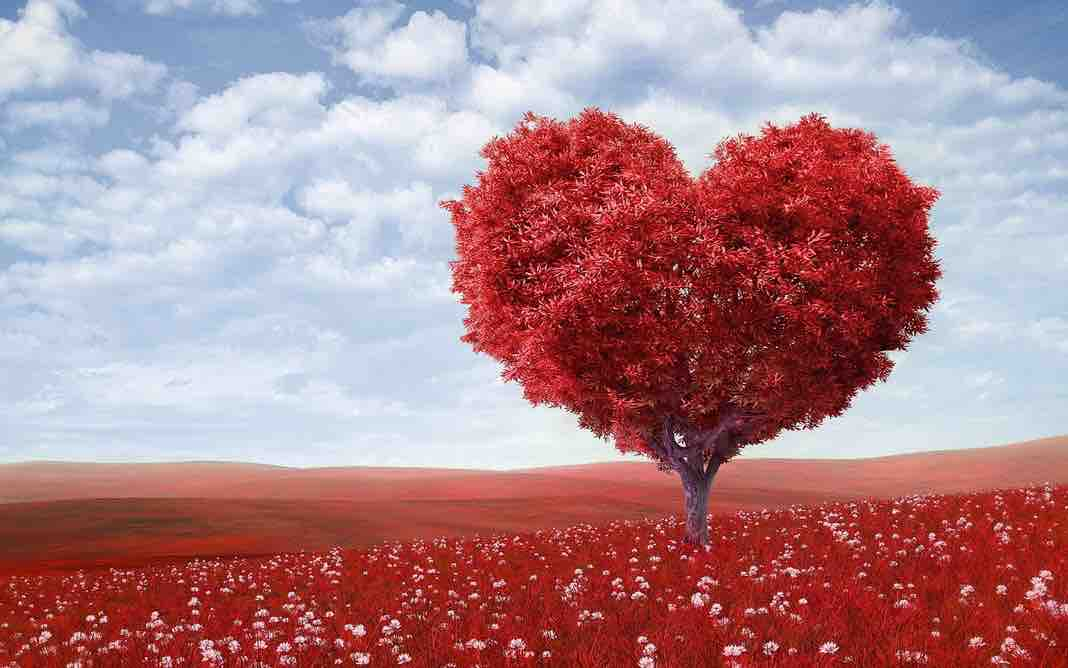 Love Tests: Keeping Track of Your Love IQ Scores
