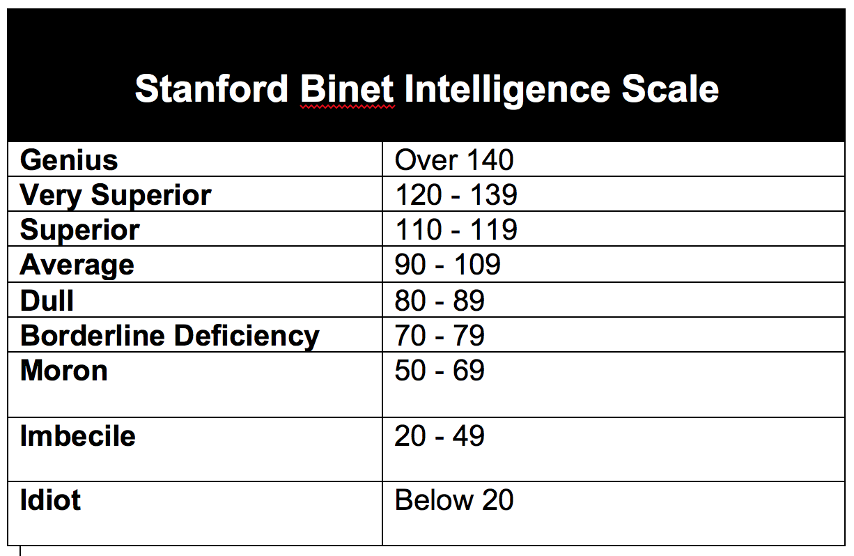 Stanford Binet Intelligence Test: Is It The Right Option For You?